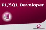 PL/SQL Developer