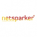 Netsparker Cloud Web Application Security Scanner