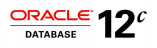 Oracle Database 12c Mobile Server